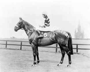 Lescargot with Tommy Carberry (591-01aa)